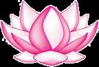 wpid-lotus-art1.png