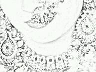 SketchGuru_20130126233305